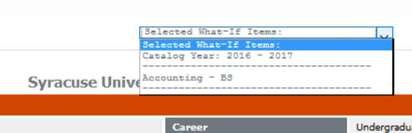 Drop down of selected What-If criteria on Degree Works